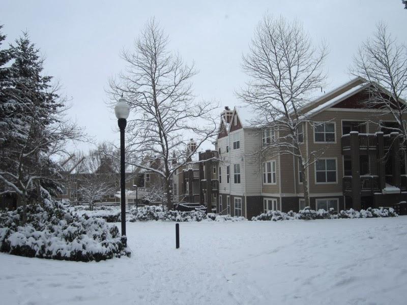 snowy_wasteland